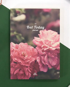 Blossom But Today Diary